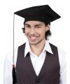 Afstudeer hoedjes geslaagd per stuk