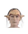 Elfen hoofdmasker met haar