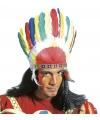 Toppers Indianen tooi met gekleurde veren