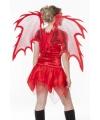 Rode duivel vleugels 105 cm