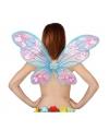Vlinder vleugels roze met blauw