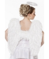 Witte vleugels 60 cm